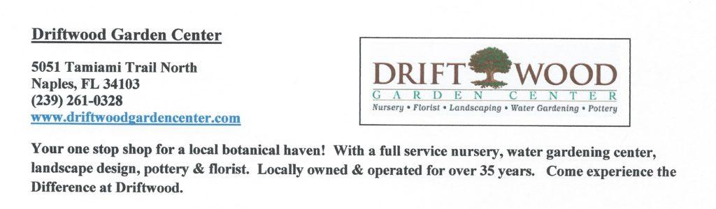 Driftwood 500_749